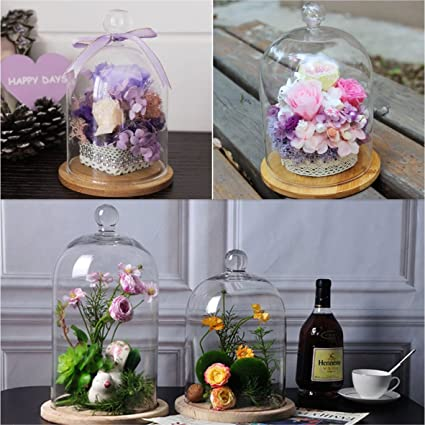 Amazon.com: mooinjoinin Gl Display Cloche Bell Jar Dome Flower ... on wooden desk base, wooden lamp base, wooden cross base, wooden cabinet base, wooden bowl base, wooden sculpture base, wooden bed base, wooden statue base, wooden sofa base, wooden light base, wooden chair base, wooden ring base, wooden plaque base, wooden sign base, wooden plant base, wooden wreath base, wooden clock base, wooden table base, wooden tree base, butterfly base,
