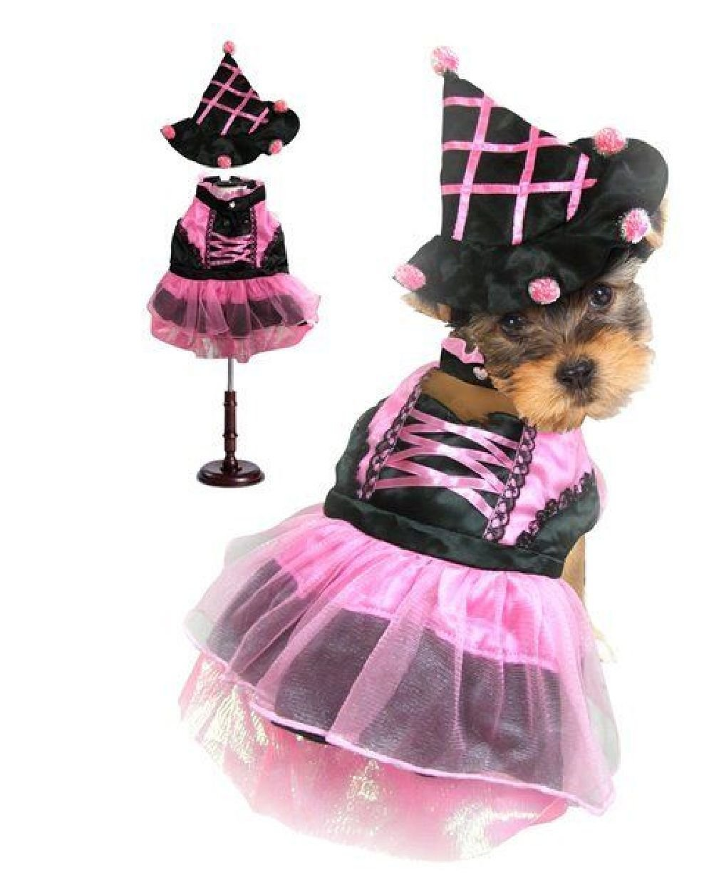 Dog Costume Pink Pom Pom Witch Costumes Dogs As Halloween Witches