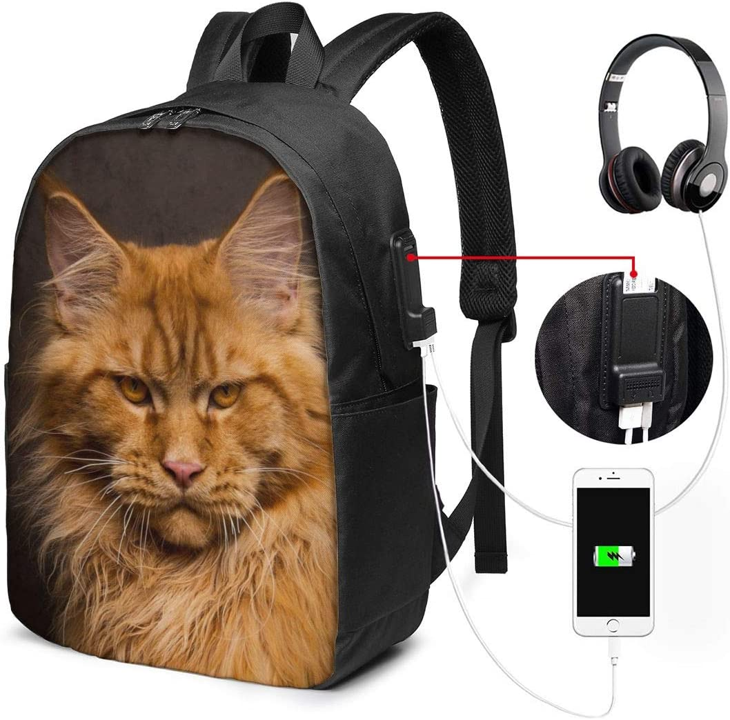 Colorful Crown Cats Brightly Colored Pet Personality 17 Inch College School Computer Bag Laptop Backpack with USB Charging Port for Women Men College Student Travel Outdoor Camping Daypack