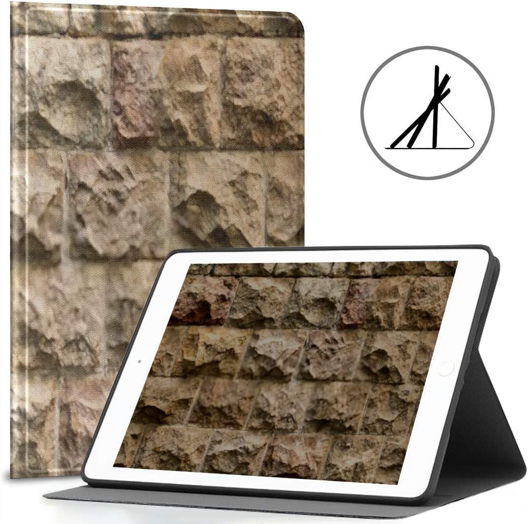 iPad Cubierta de 9.7 Pulgadas (Estuche Blando) Textura Transparente Pared de Piedra Medieval Gótico iPad Air Cubierta de 2/9.7 Pulgadas con función automátic