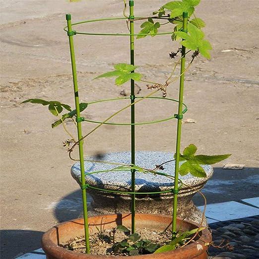 TUEU Soporte para plantas de jardín para escalar verduras, flores, tomates, frutas, interior y exterior: Amazon.es: Jardín