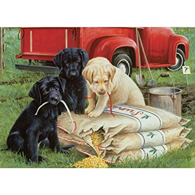 Willow Creek Press WC39781 Just Dogs Puzzle: Toys & Games