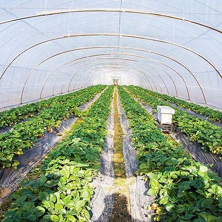 LeKing Jardín Poly Tunnel, Jardinería Walk-In Polytunnel Tent, Invernadero Plantas de Metal Protector de Marco Paneles de Techo Foil Invernadero: Amazon.es: Hogar