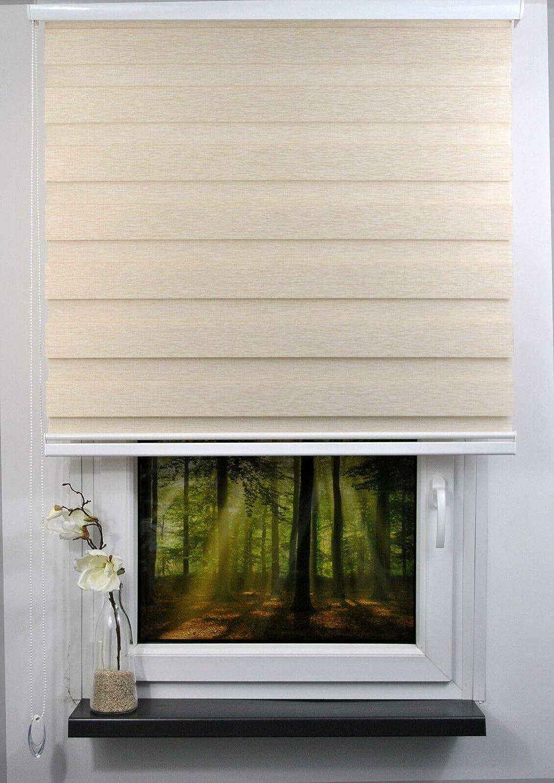 Kettenzug Farbe beige geschlossener Kassette plisseeonline Duo Rollo L/änge 170 cm Breite 60 cm mit breiter Beschwerung