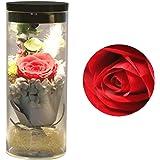 Jiewo Conservado Rosa Real Natural Flor Fresca Hecha a Mano ...