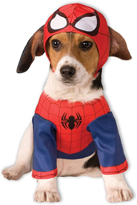 Disfraz para mascota - Spiderman superhéroe, perro talla L: Amazon ...
