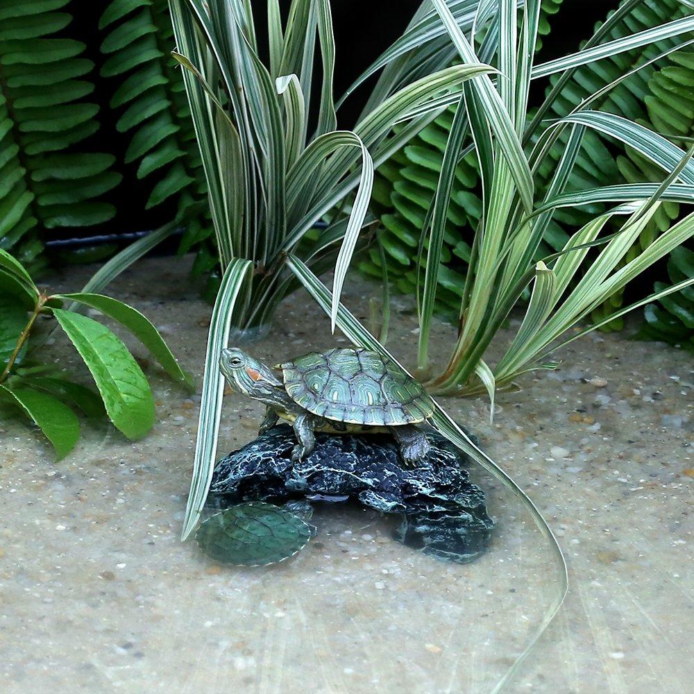 World 9.99 Mall Cueva de Reptiles, Roca de Reptiles Ocultar la decoración del hábitat, Lugar esconder pequeños lagartos, Tortugas, Reptiles, Anfibios, ...