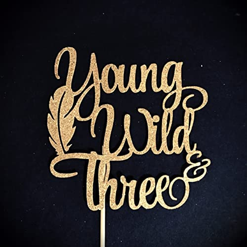 47a6b36b8b7a Young Wild and Three Cake Topper, 3rd Birthday Cake Topper, 3 Cake Topper,