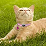 Didog 6 Pcs Safety Cat Collars,Breakaway Cats