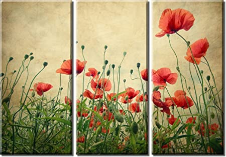 Picture Sensations Framed Huge 3-Panel Modern Art Flowers Red Poppies Field Giclee Canvas Print