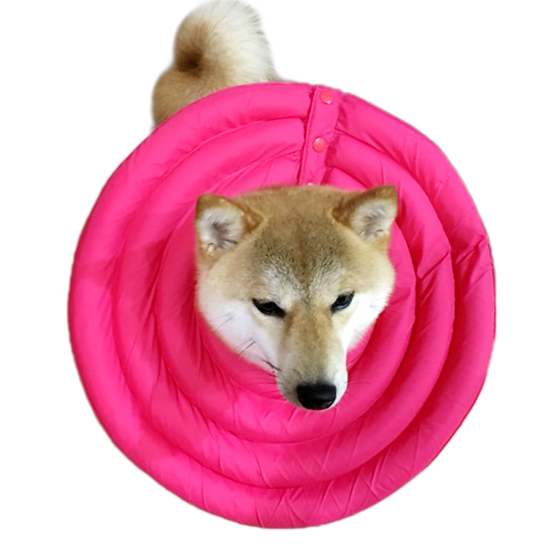 Alfie Pet by Petoga Couture - Toby Waterproof Recovery Collar (for Dogs and Cats) - Color: Pink, Size: XXL