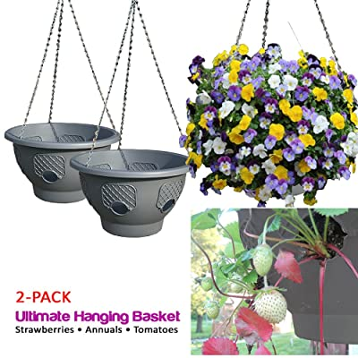 Ultimate Hanging Baskets - Strawberry, Tomato, Flower, and Herb Outdoor Planters - Use Garden Pots for Growing Plants Outside On A Deck, Fence, or Balcony (2): Garden & Outdoor