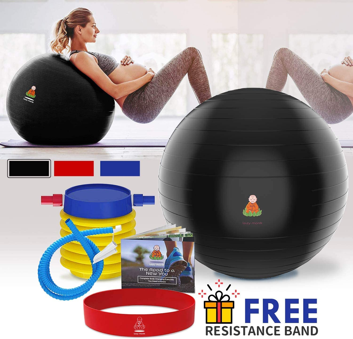 Lazy Monk Exercise Ball, Fitness Workout Chair Pregnancy Ball Anti-Burst Yoga Pilates Large Balance Gym Ball w Pump, Extra Pin Excersize Gym Swiss Ball, Elastic Loop Hard Cover Workout Guide