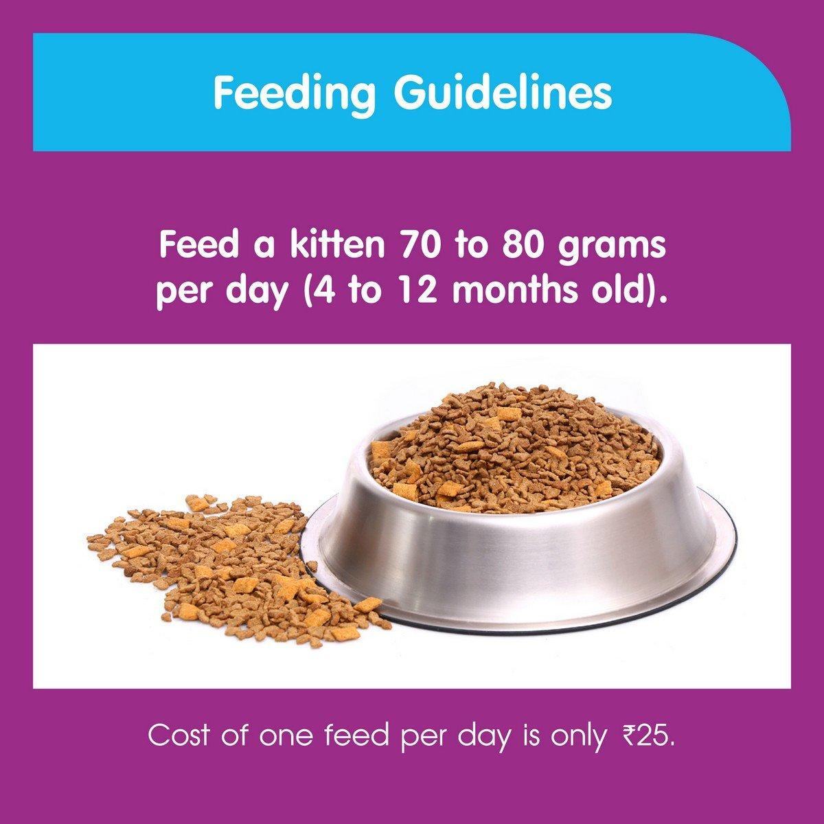 Buy Whiskas Kitten Cat Food Junior Ocean Fish 1 1 kg Pack line