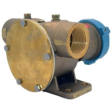 Johnson Bombas f8b-5 1 1/4-inch TNP Bomba de Embrague eléctrico