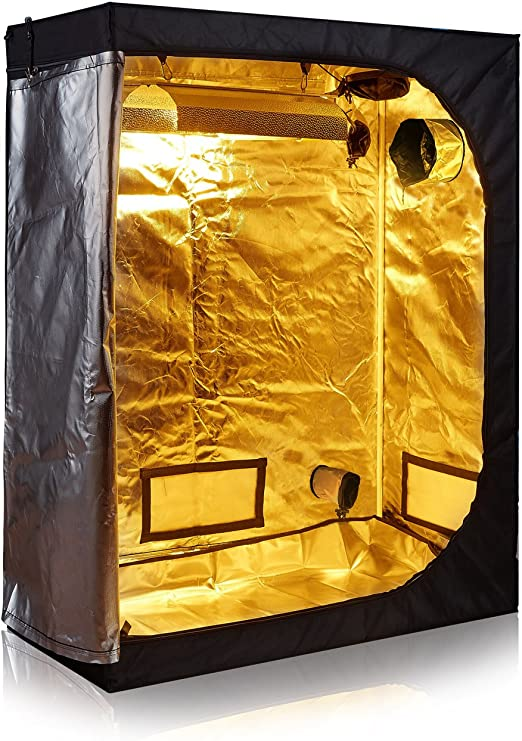 TopoLite 2x4 Grow Tent - Best For Growing Fruits Out Of The Season