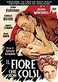 Il Fiore Che Non Colsi [Italia] [DVD]