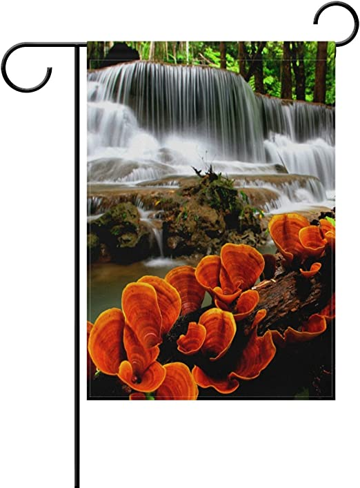 LIANCHENYI Bandera de doble cara, diseño de cascada con ganoderma Lucid, de poliéster, bandera de la familia al aire libre, para casa, fiesta, jardín, 30 x 45 cm, poliéster, multicolor, 28x40(in): Amazon.es: