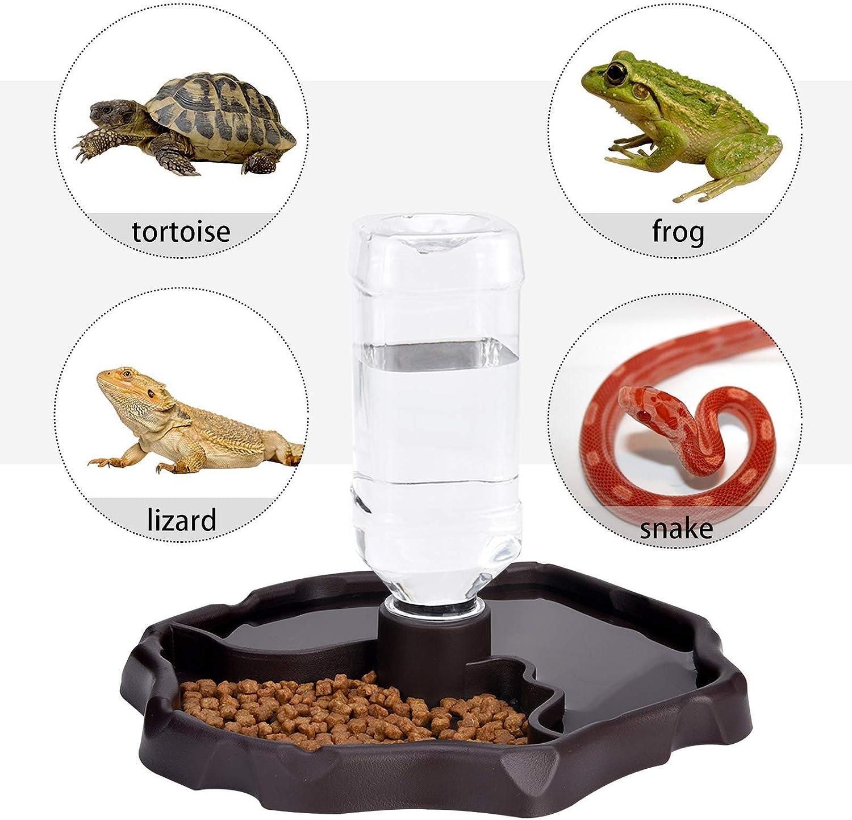 ciotola per rettili geco VILLCASE mangiatoia per animali domestici serpente camaleonte lucertola dispenser automatico di acqua per tartarughe