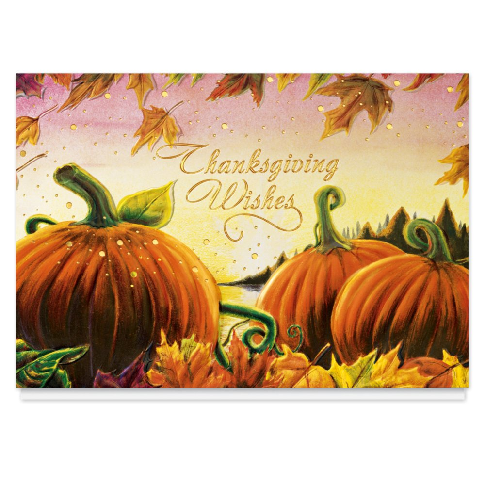 Amazon thanksgiving pumpkins holiday card 25 premium amazon thanksgiving pumpkins holiday card 25 premium thanksgiving cards with foiled lined envelopes health personal care kristyandbryce Image collections