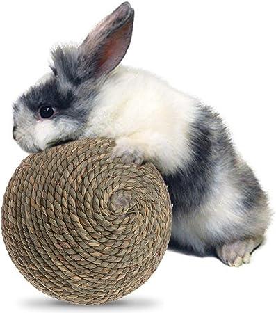 Piccoli Animali Gioca A Palle Giocattoli da Masticare Rotolanti E Dolcetti da Rosicchiare per Conigli Porcellini DIndia Criceto Coniglietto Cincill/à Xianghaoshun Palla da Masticare per Conigli