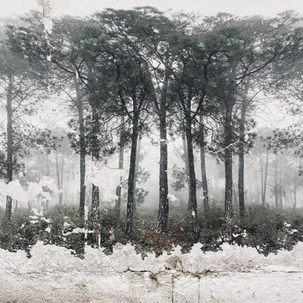 Amazon Hxcok カスタム壁画壁紙レトロなノスタルジックなブラックホワイト抽象的な森鳥アート壁画リビングルームベッドルーム写真壁紙 130x80cm 壁紙