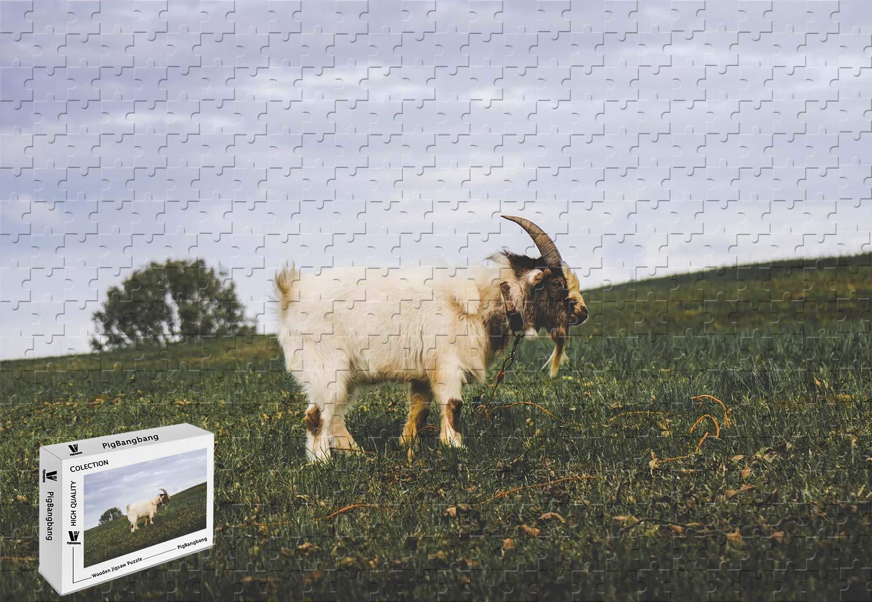 消費税無し PigBangbang B07J4VNRNG 29.5×19.6インチ バスウッド Lサイズ 芝生 白ヤギの角 白ヤギの角 芝生 1000ピース ジグソーパズル B07J4VNRNG, 日吉村:911d99c5 --- sinefi.org.br