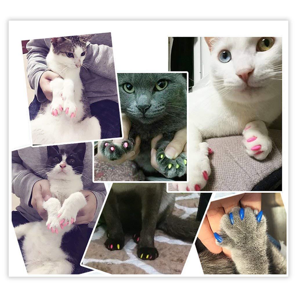 HINATAA - 160 Unidades de Tapas de uñas para Mascotas, Gatos o Perros, con Pegamento para Garras y arañazos, a la Moda, Seguro para Mascotas, ...