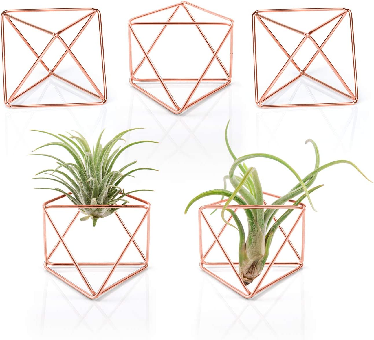 Mkono 5 Packs Air Plant Holder, Same Shape Mini Metal Tabletop Himmeli Decor Modern Geometric Planter Tillandsia Air Fern Display Stand with Each Side 2.6'' Long for Home Office Decor Gift Idea, Pink