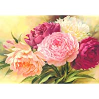AIRDEA DIY 5D Diamond Painting by Number Kit Full Drill Peony Flores Rhinestone Bordado Cross Stitch Supply Artes Craft Lona Decoración de Pared