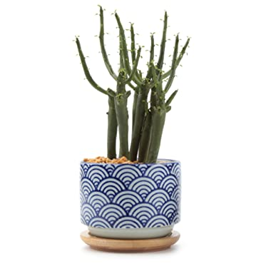 T4U 3 Inch Ceramic japanese Style Serial No.3 succulent Plant Pot, Blue Waves Cactus Plant Pot Flower Pot/Container/Planter White