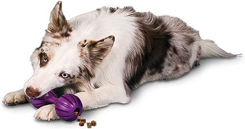 PetSafe-Busy-Buddy-Waggle-Dog-Toy
