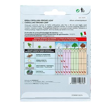 Semillas Aromaticas Cebollino (1 Gramo): Amazon.es: Jardín