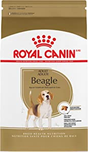 Royal Canin Beagle Adult Breed Specific Dry Dog Food, 6 lb. bag