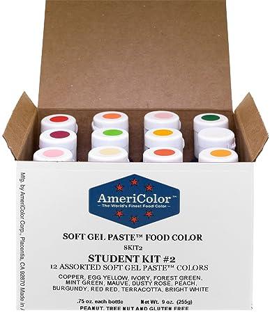 Amazon.com: AmeriColor Soft Gel Paste Student Kit 2, Set Of 12 ...