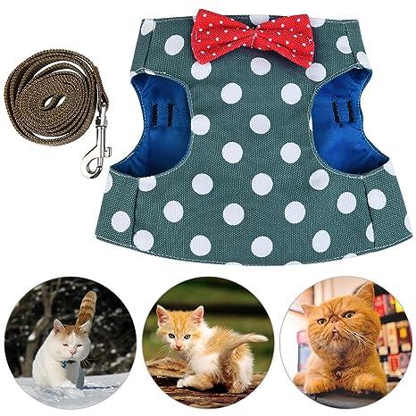 Petacc Arnés y Correa para Gato Correa Cómoda para Mascotas Juego de Arnés para Gatos Transpirable