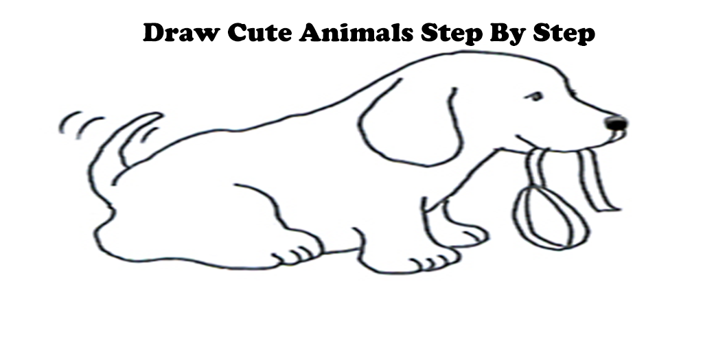 how to draw amazon rainforest animals step by step