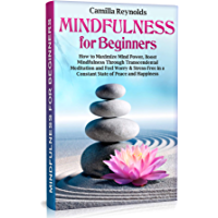 Mindfulness for Beginners: How to Maximize Mind Power, Boost Mindfulness Through Transcendental Meditation and Feel Worry & Stress-Free in a Constant State ... (guide, exercises) (English Edition)