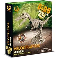Geoworld-Dino Excavation Kit - Velociraptor Skeleton