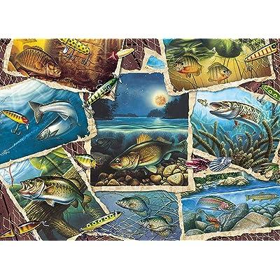 Fish Pics: Toys & Games [5Bkhe0506085]