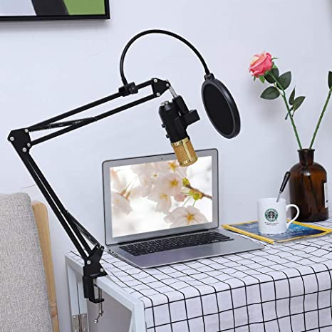 Kafuty Kit de micrófono de Condensador El micrófono Personnal ...