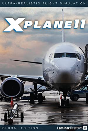 Official Version - X-Plane 11 Global Flight Simulator (PC, MAC
