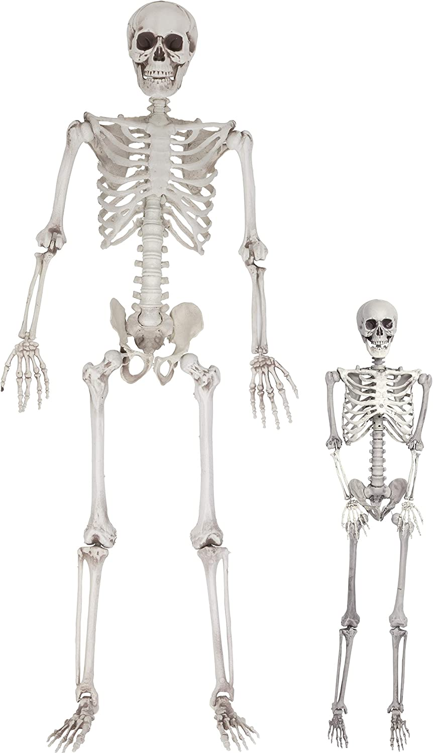 """Halloween Life Size Skeleton Value 2 Pack Adult 5 4"""" and Child 3 Decorations w Bending Joints Weatherproof Human Bones Body Prop Perfect"""