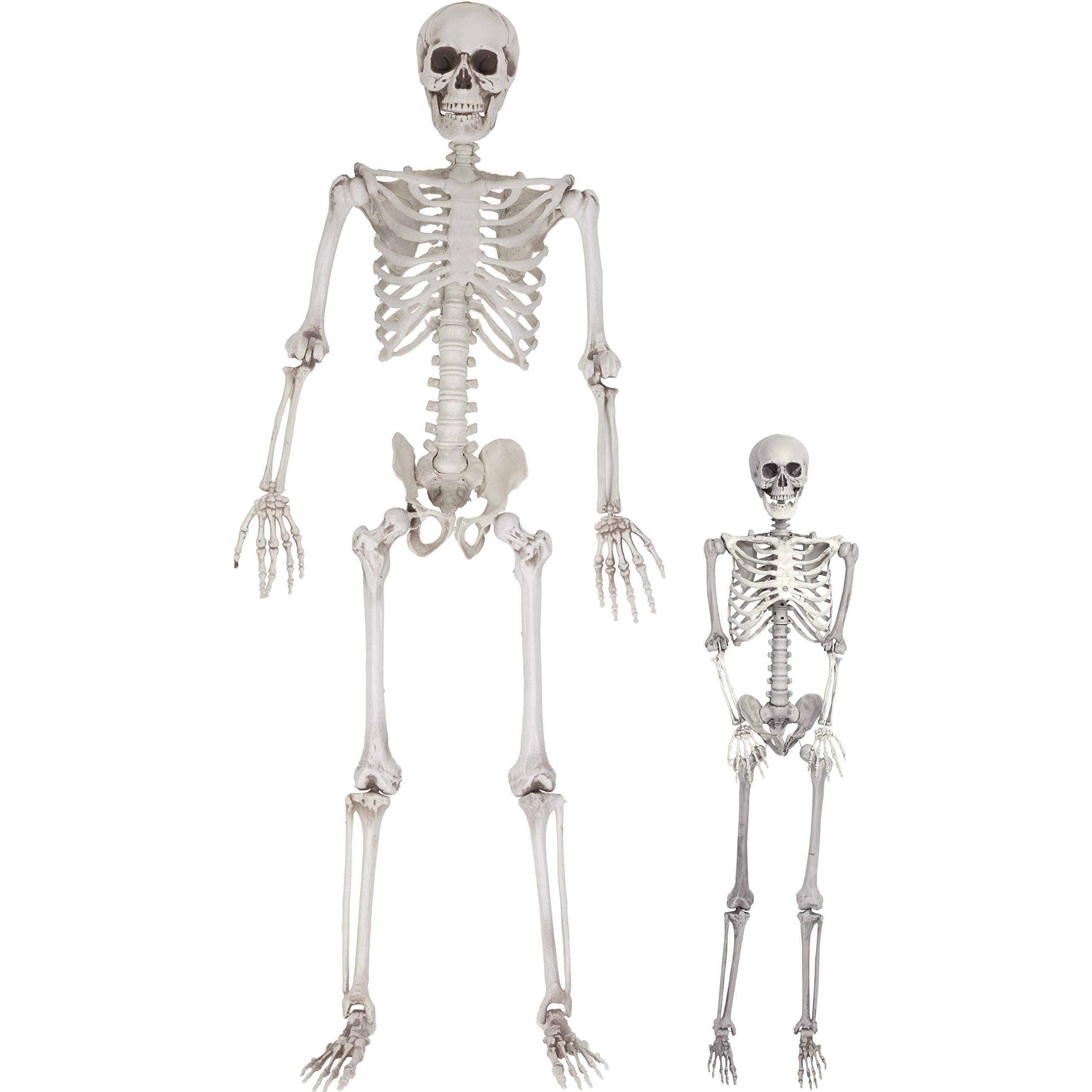 Halloween Life Size Skeleton Value 2 Pack - Adult (5' 4'') and Child (3') Decorations w Bending Joints - Weatherproof Human Bones Body Prop - Perfect for Indoor/Outdoor Use by SCS Direct