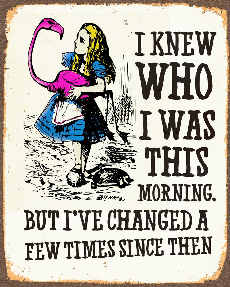 Alice In Wonderland I've Changed METAL Wall Sign 6x8inches Plaque Vintage Retro poster art picture print Chill