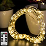 Christmas Lights Battery Operated String Lights - LOENDE Outdoor String Lights Waterproof 8 Modes 100 LED Fairy Lights Copper Wire Firefly Lights Remote Control for DIY Wedding Party Decorations