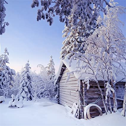 AOFOTO 10x10ft Beautiful Snow Scenery Backdrop Snowfield Winter Natural Landscape Photography Background Outdoor Trees Cabin White