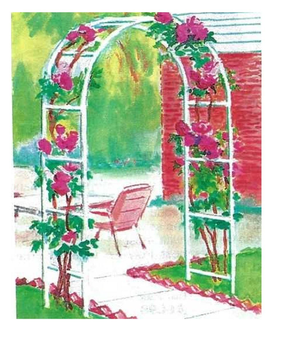 Trenton Gifts Weather Resistant Free-Standing Arched Trellis | Great for Garden or Patio | 7 Ft x 10 Inch