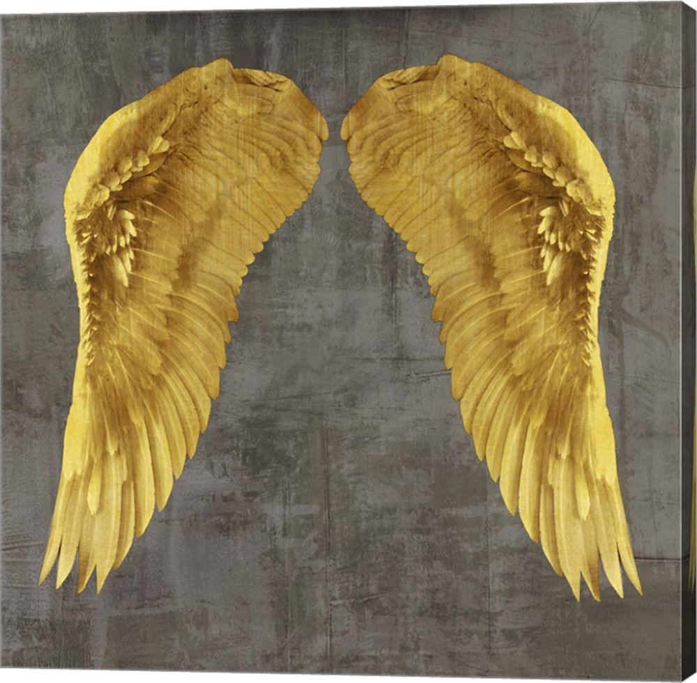 Amazon.com: Angel Wings I by Joannoo Canvas Art Wall Picture ...