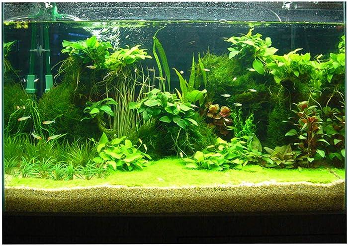 Aquarium-Gravel-Buying-Guide